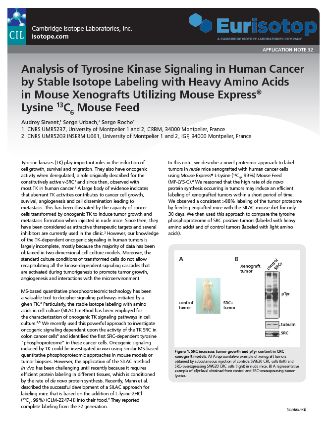 Analysis of Tyrosine Kinase Signaling in Human Cancer by